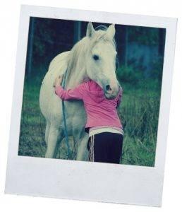 Сап лошадей: возбудитель болезни, диагностика, симптомы, лечение и профилактика, фото