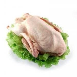 Мясо утки: польза и вред для организма