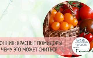 «сонник помидор приснился, к чему снится во сне помидор»