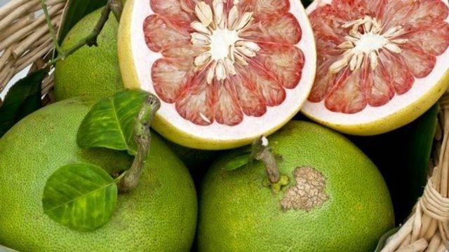 Помело для похудения - полезные свойства для организма, состав и калорийность