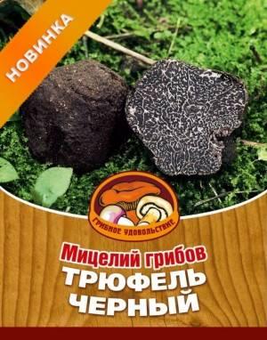 Драгоценный гриб. почему трюфели такие дорогие - korrespondent.net