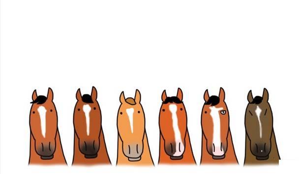 Как назвать лошадь: красивые клички для мальчика и девочки