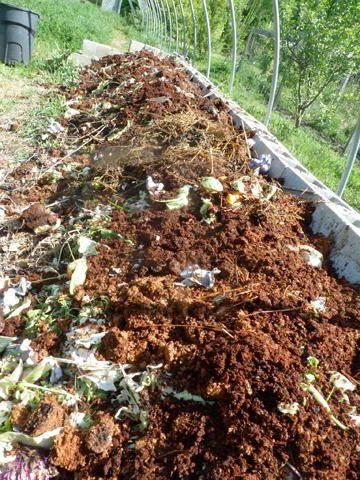 Перепелиный помет в качестве удобрения: как приготовить и применить перегной, подкормку и иные способы использовать навоз перепелов, отзывы фермеров