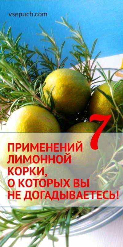 Характеристика цедры лимона