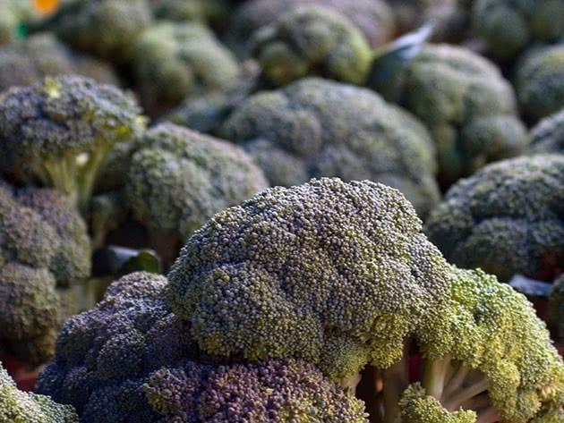 Выращивание рассады капусты брокколи и уход за ней в домашних условиях