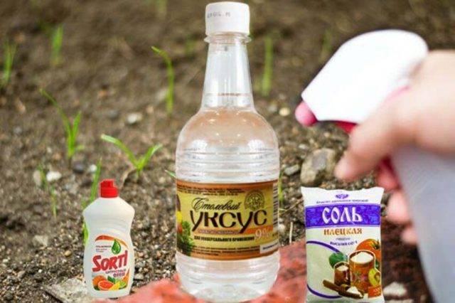 Уксус с солью — народные рецепты от сорняков