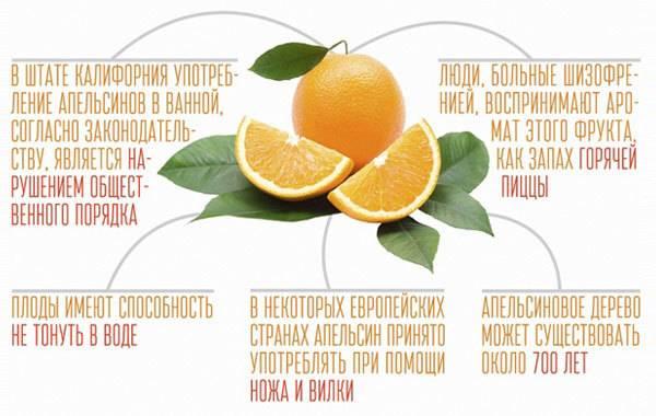 Апельсины: полезные свойства и противопоказания