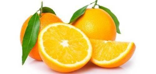 Апельсин: выращивание «китайского яблока»