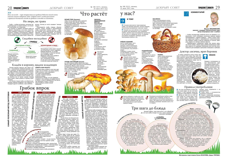 Чем полезны грибы: калорийность, бжу, какие витамины содержатся
