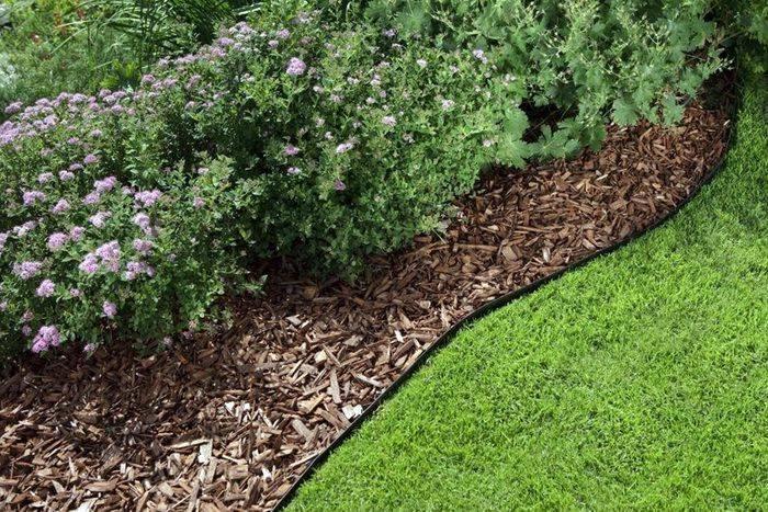 Мульчирование: когда и как правильно мульчировать почву