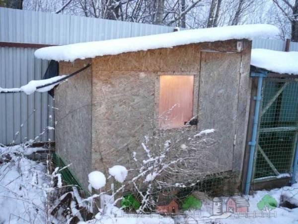 Зимний курятник своими руками - расчет размеров, постройка, внутреннее обустройство, отопительная система, дворик для выгула