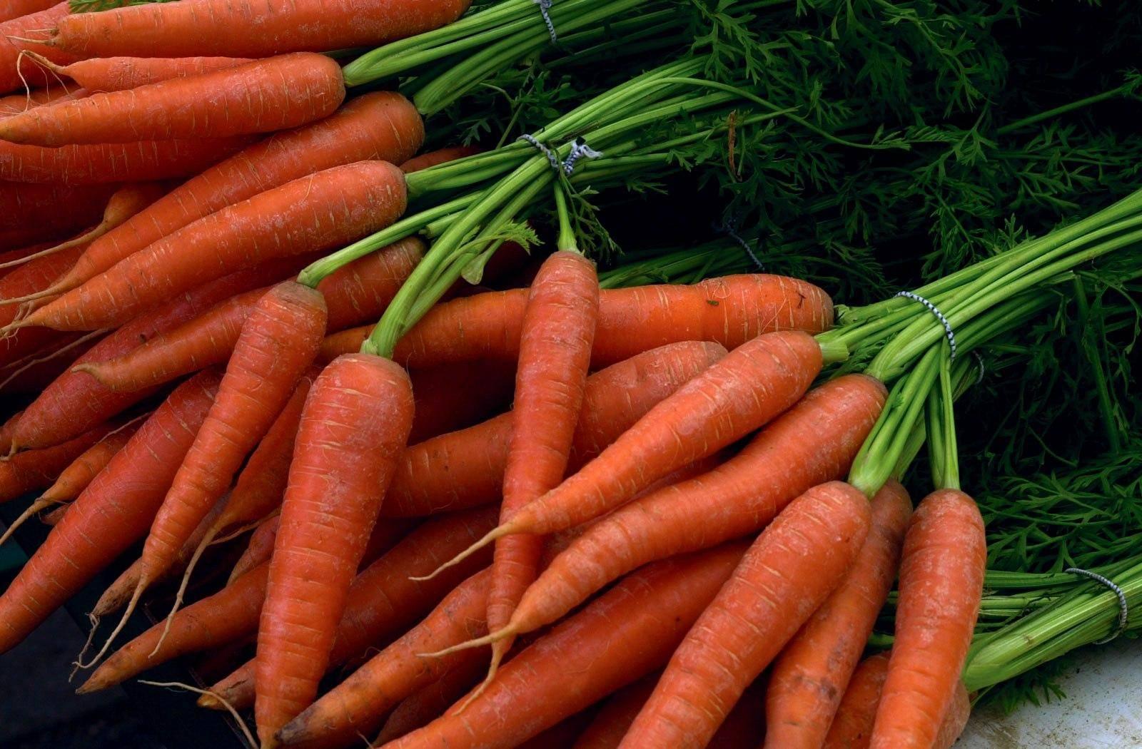 Интересные факты про морковь