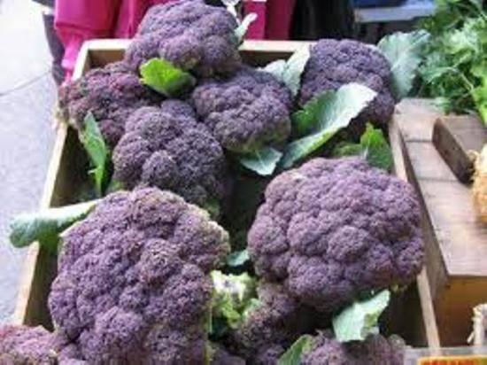 Отличия брокколи от цветной капусты