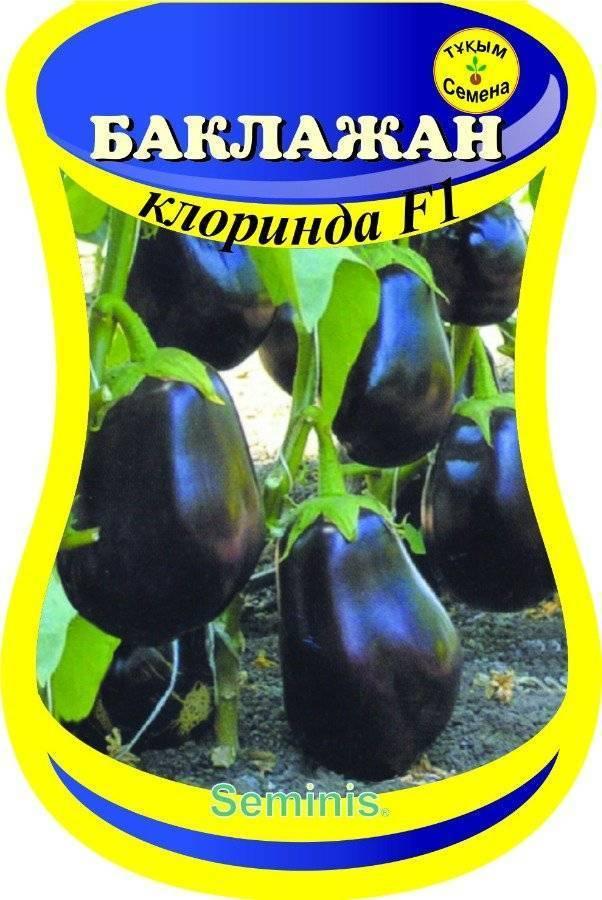 Баклажан клоринда f1: описание сорта, его характеристики, особенности выращивания и ухода в открытом грунте и в теплице, фото, отзывы