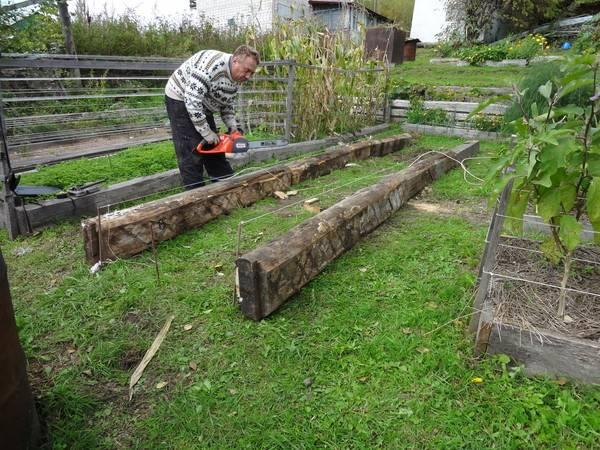 Огород игоря лядова – чудо, посильное каждому - огород, сад, балкон - медиаплатформа миртесен