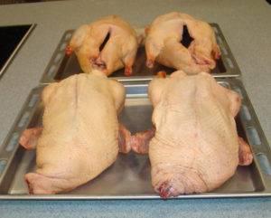 Польза мяса дикой утки. дикая или домашняя утка