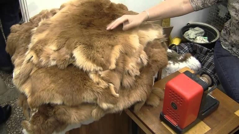 Как постирать овечью шкуру в домашних условиях: можно ли в стиральной машине, как обработать овчину руками, чем вывести пятна?