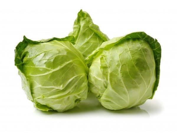 Пекинская капуста горчит в салате: почему это происходит, что может давать такой вкус кроме китайского овоща и как исправить блюдо? русский фермер