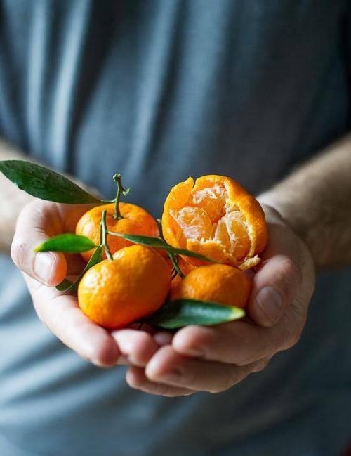 Марокканские мандарины: фото