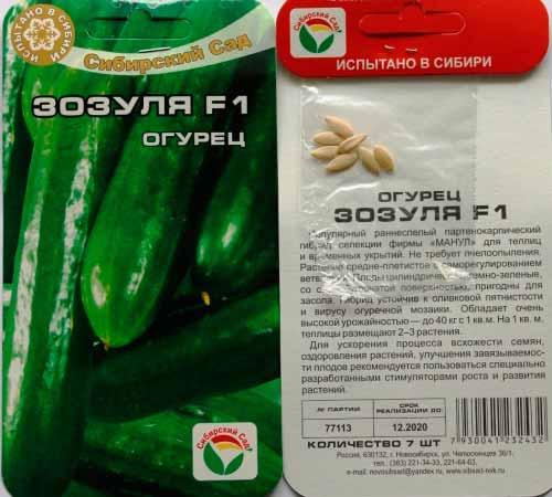 Выращивание в теплице огурцов Зозуля — основные характеристики