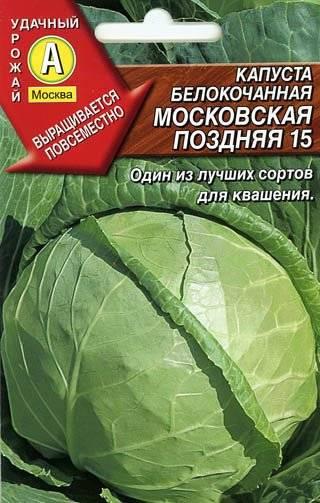 Капуста московская поздняя – описание сорта, фото, отзывы