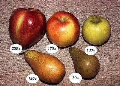 Самые интересные факты о яблоках