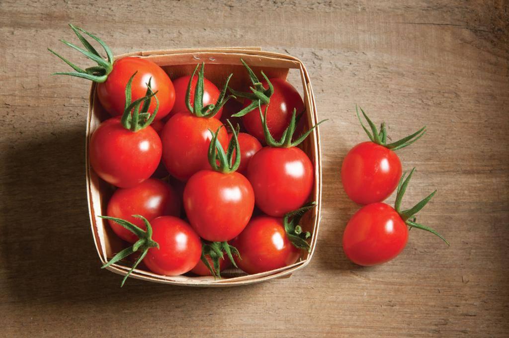 Калорийность томатов: сколько калорий содержится в 100 граммах свежих помидор, соотношение бжу