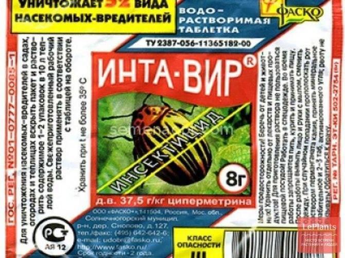 Интавир для капусты: инструкция по применению препарата от вредителей и как его развести, можно ли опрыскивать, обрабатывать рассаду одновременно с иными химикатами?