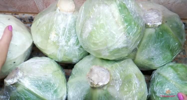 Как хранить капусту в домашних условиях