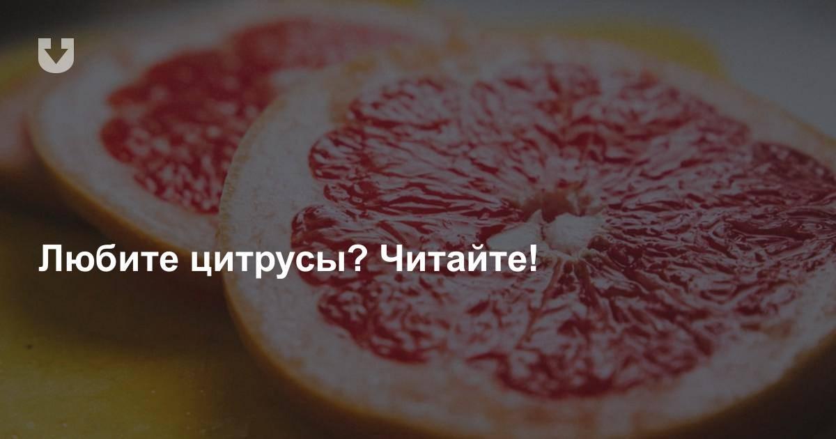 С какими лекарствами нельзя есть грейпфрут: список совместимости