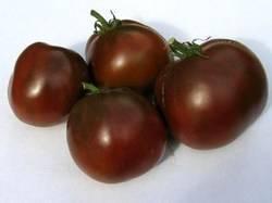Сорт томата маруся — описание и правила выращивания