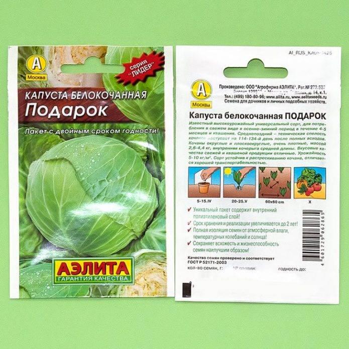 Универсальный высокоурожайный сорт капусты «подарок»: фото, описание и пошаговая инструкция по выращиванию