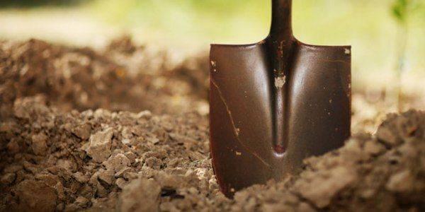 Органические удобрения: что это? способы внутрипочвенного внесения жидких и других удобрений, виды и их характеристика. почему они считаются наиболее ценными?