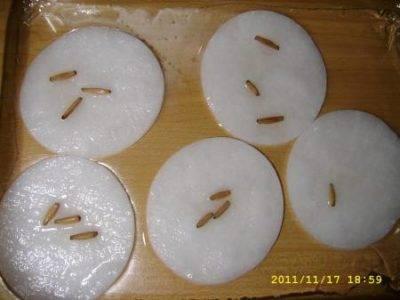 Правила замачивания семян тыквы перед посадкой