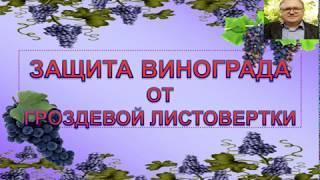 """""""батрайдер"""", инсектицид. подробная инструкция (состав, применение .."""