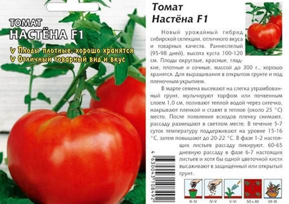 Томат настена: описание и характеристика сорта, отзывы, фото, урожайность | tomatland.ru