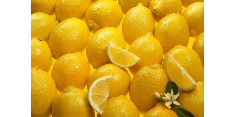 Почему лимон ощелачивает организм   здоровье детей в наших руках
