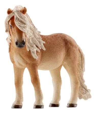 Описание пород лошадей с фотографиями