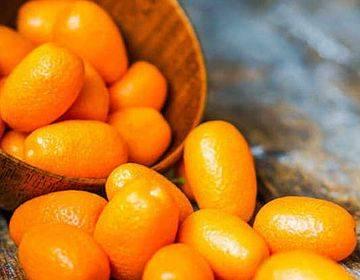 Кумкват: полезные свойства и противопоказания для организма, что за фрукт, нужно ли чистить