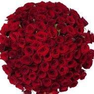 Как сохранить срезанные розы в вазе надолго красивыми?