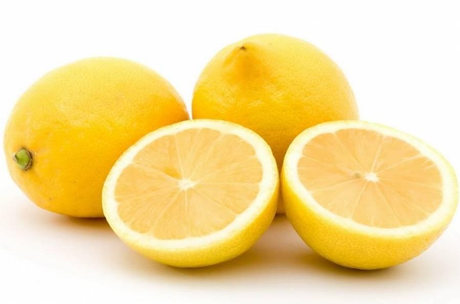 Лимон: состав, калорийность, польза и вред фрукта для организма