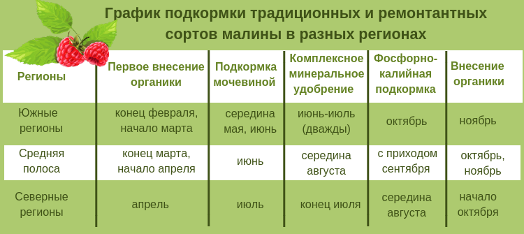 Подкормка малины осенью минеральными и органическими удобрениями: описание, инструкции, способы, для начинающих