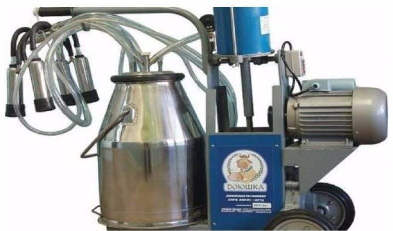 Использование и выбор доильных аппаратов для коз