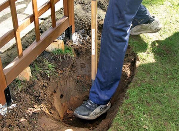 Когда и как сажать крыжовник саженцами весной: пошаговая инструкция