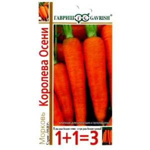 Сорта моркови для сибири - огород