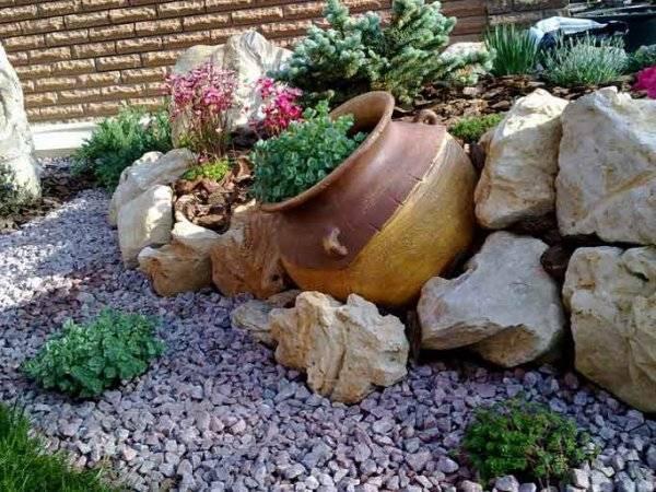 Подбираем подходящие цветы, растения и камни для альпийской горки