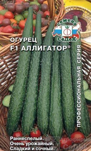 Огурец аллигатор отзывы фото. огурцы «аллигатор f1»: описание сорта, посадка и уход