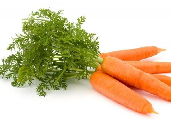 Полезна ли фиолетовая морковь? состав, польза и применение   пища это лекарство