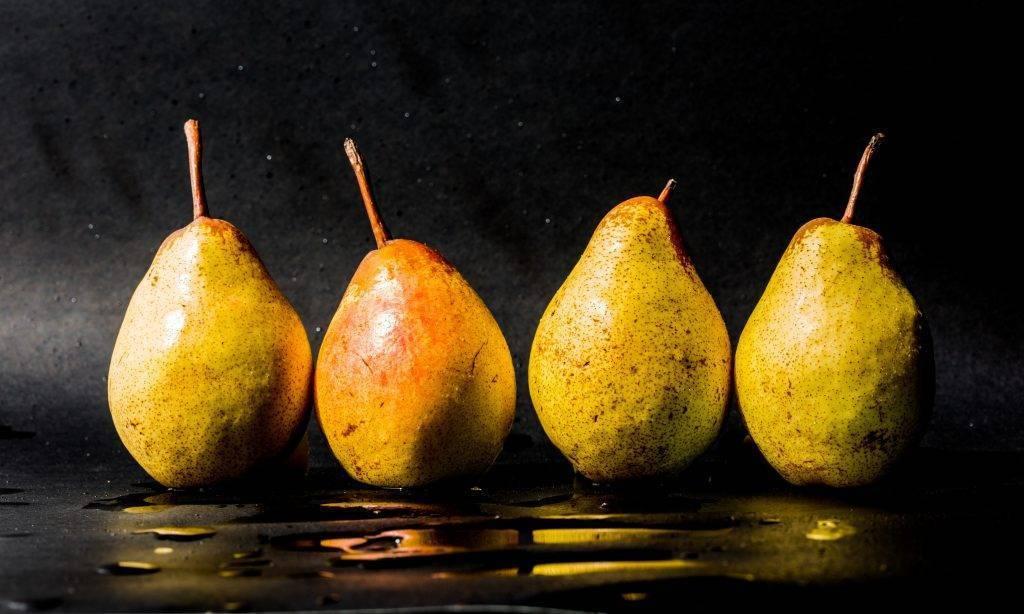 Парша на груше: описание, как избавиться, чем обработать, профилактика