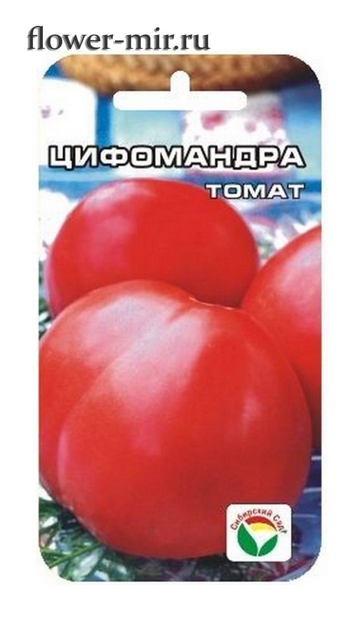 "Характеристика и описание томата ""цифомандра"""